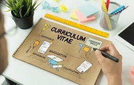lingue nel curriculum